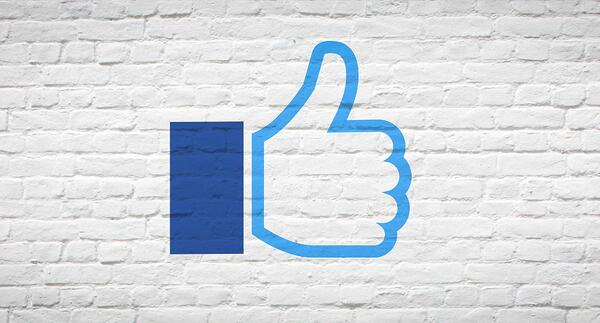 How to Set Up Great Facebook Ads Correctly and Blaze The Way To Profits