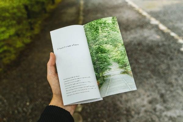 Four-Ways-To-Get-a-Killer-Business-Brochure-Design