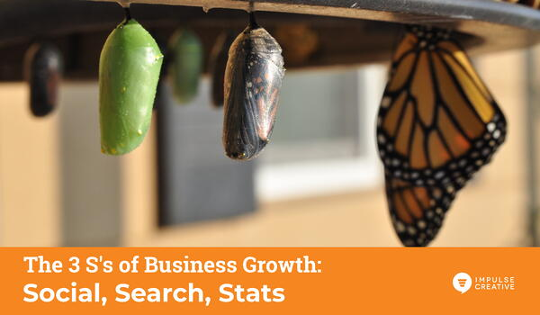 Social, Search and Stats - The 3 S's to 2020 Business Growth